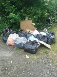 5 july 14 binbags litter